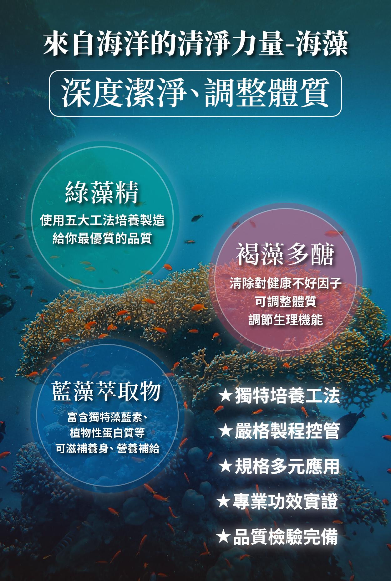 藍綠藻 調節生理機能 滋補養身